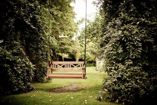 bench-garden-grass-334978