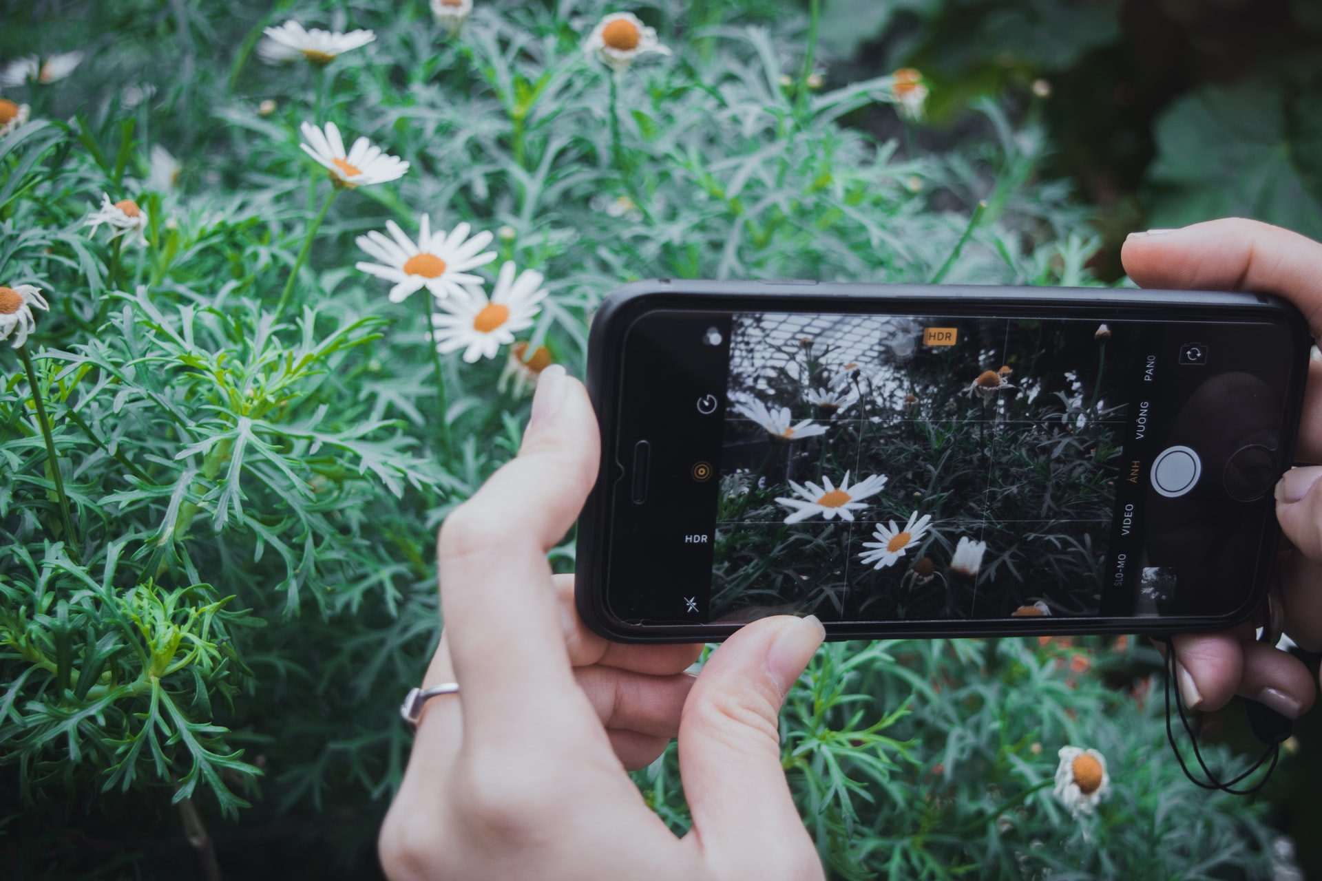 Living With Godly Purpose In The World Of Social Media